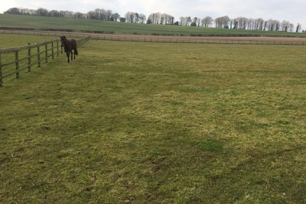 Pasture Land