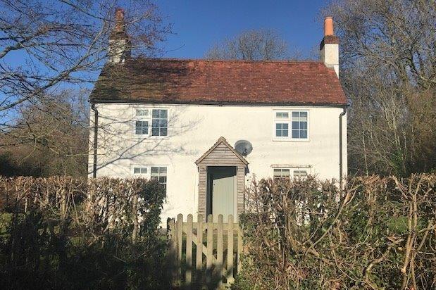 White Cottage, Holywell