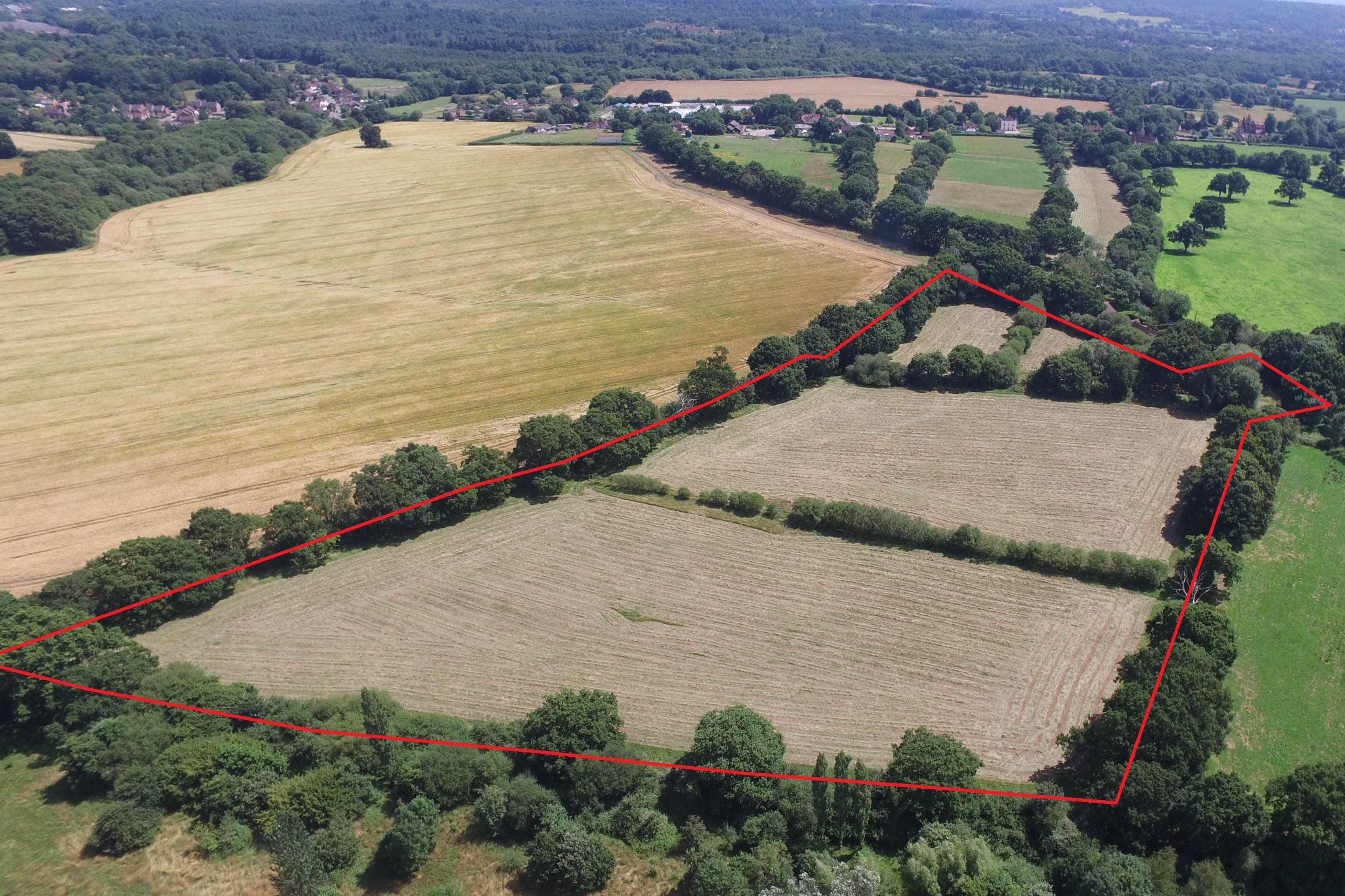 Lone Barn Farm, Greatham